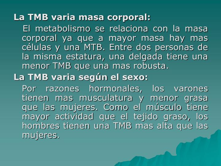 La TMB varia masa corporal: