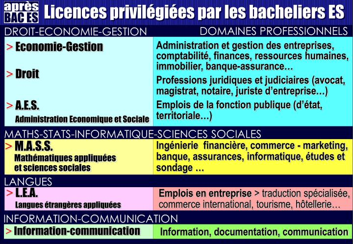 Licences privilégiées par les bacheliers ES