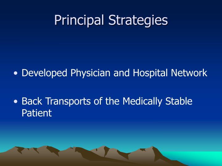 Principal Strategies