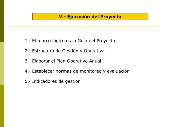 V.- Ejecución del Proyecto