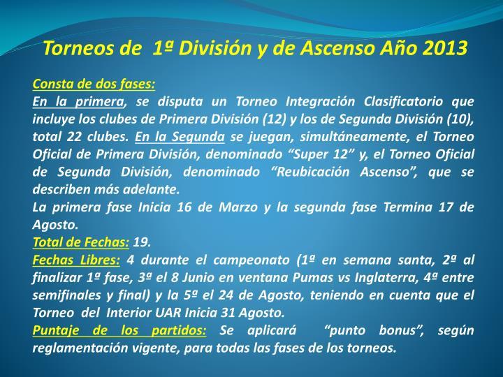 Torneos de 1 divisi n y de ascenso a o 2013