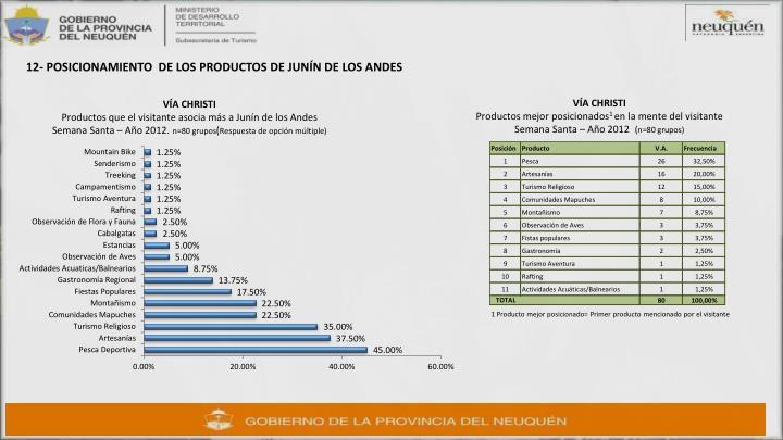 12- POSICIONAMIENTO  DE LOS PRODUCTOS DE JUNÍN DE LOS ANDES