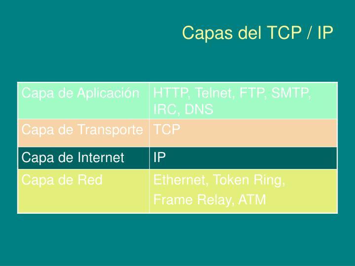Capas del TCP / IP
