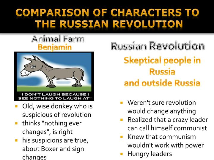 a comparison of animal farm and russian revolution George orwell's animal farm and the russian revol animal farm and the russian revolution have many similarities and ideas the characters, settings, and the plots are the same.
