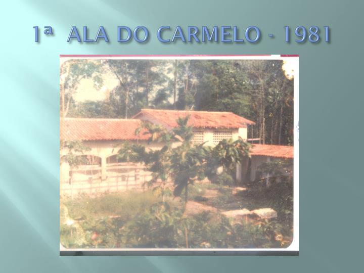 1ª  ALA DO CARMELO - 1981