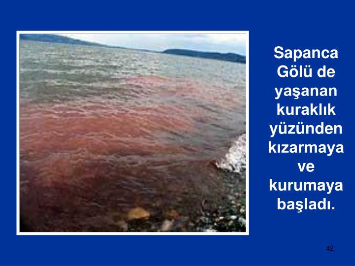Sapanca Gölü de yaşanan kuraklık yüzünden kızarmaya ve kurumaya başladı.
