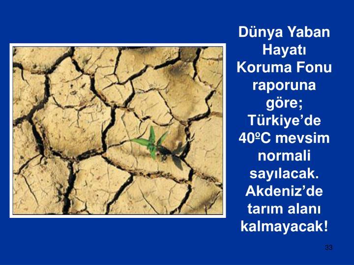 Dünya Yaban Hayatı Koruma Fonu raporuna göre; Türkiye'de 40