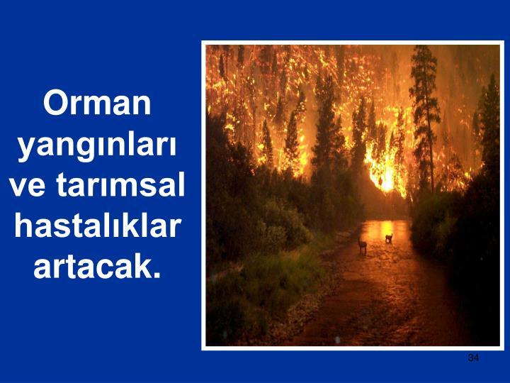Orman yangınları ve tarımsal hastalıklar artacak.