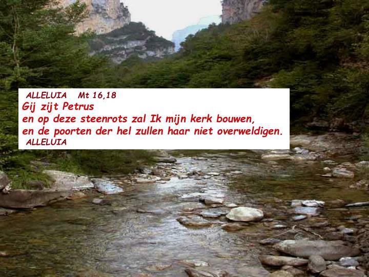 ALLELUIA   Mt 16,18