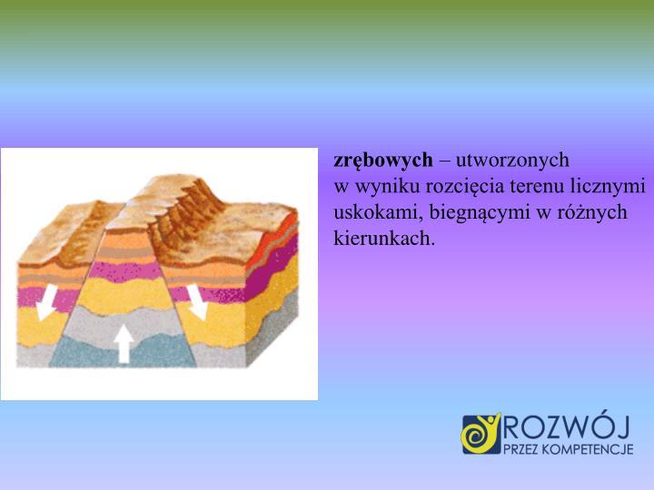 zrębowych