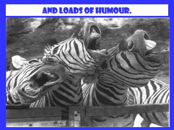 And loads of humour.