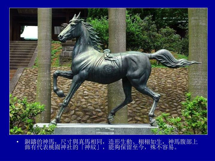 銅鑄的神馬,尺寸與真馬相同,造形生動、栩栩如生,神馬腹部上飾有代表桃園神社的「神紋」,能夠保留至今,殊不容易。