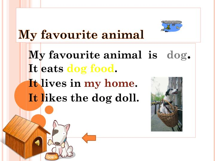my favourite animal dog Short paragraph on my pet dog category: short paragraph on dog short essay on dog (animal) short paragraph on my favourite book.