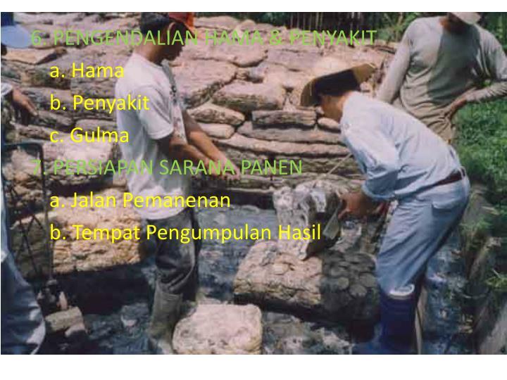 6. PENGENDALIAN HAMA & PENYAKIT