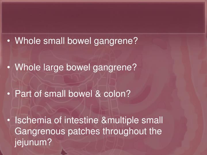 Whole small bowel gangrene?
