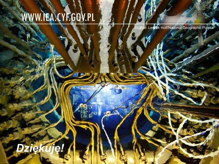 www.iea.cyf.gov.pl
