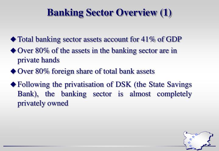 Banking Sector Overview (1)