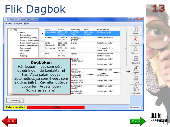 Flik Dagbok