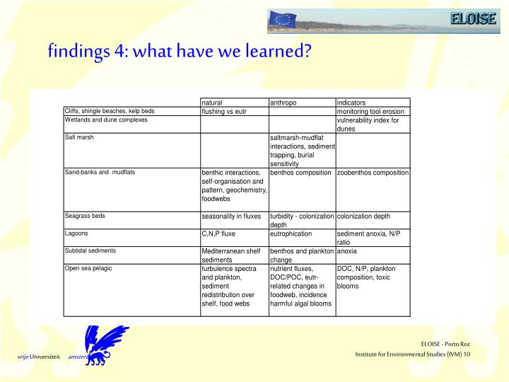 findings 4: what have we learned?