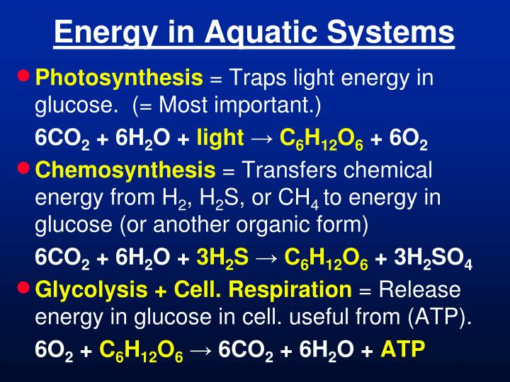 energy in aquatic systems