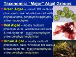 taxonomic major algal groups