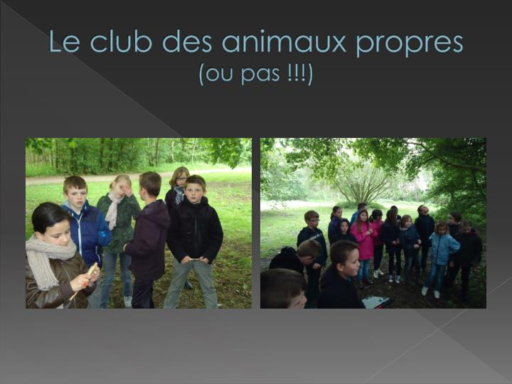 Le club des animaux propres