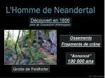 l homme de neandertal4