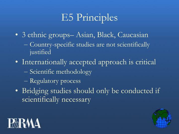 E5 Principles