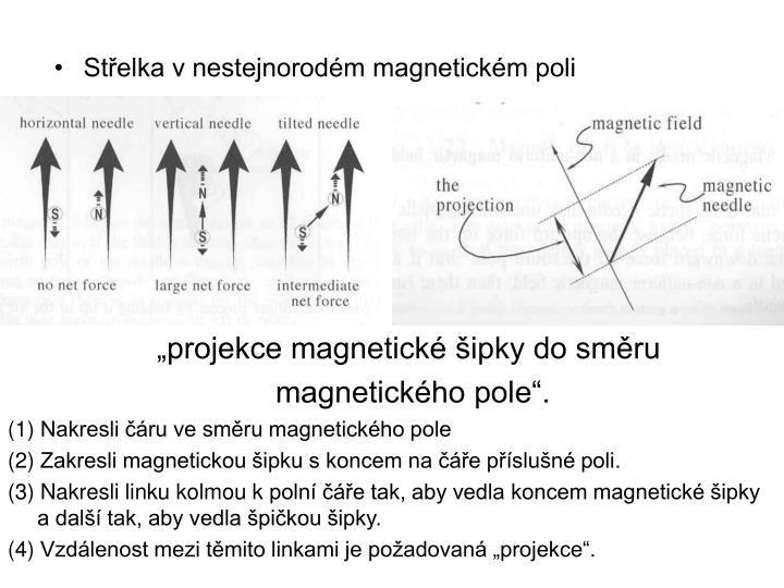Střelka v nestejnorodém magnetickém poli