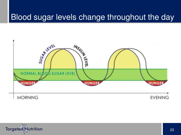 Blood sugar levels change throughout the day