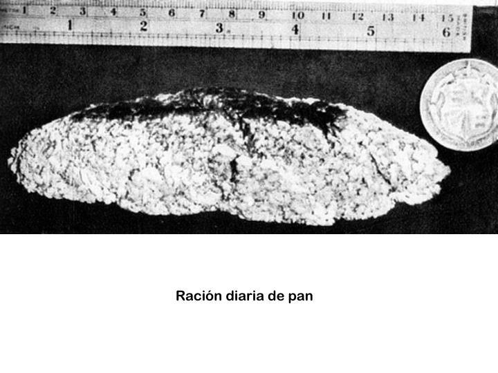 Ración diaria de pan
