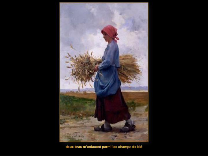 deux bras m'enlacent parmi les champs de blé