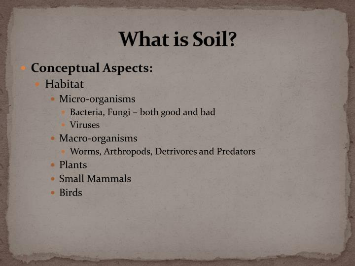 what is soil n.