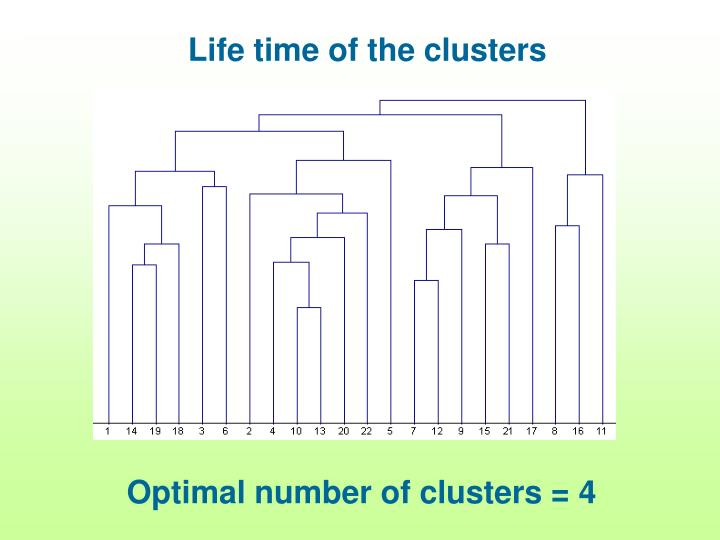 Life time of the clusters