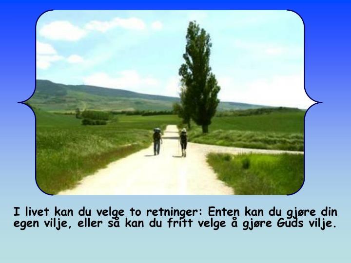 I livet kan du velge to retninger: Enten kan du gjøre din egen vilje, eller så kan du fritt velge å gjøre Guds vilje.