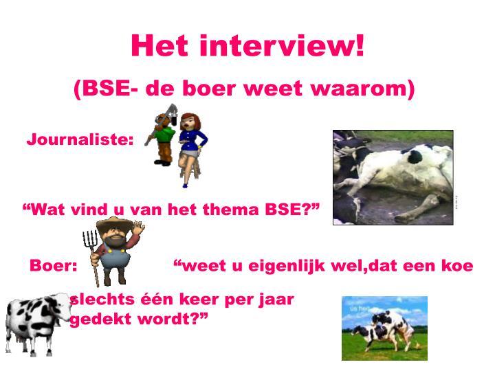 Het interview!