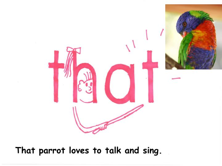 That parrot loves to talk and sing.