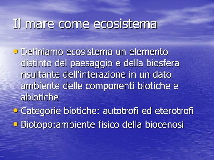 Il mare come ecosistema
