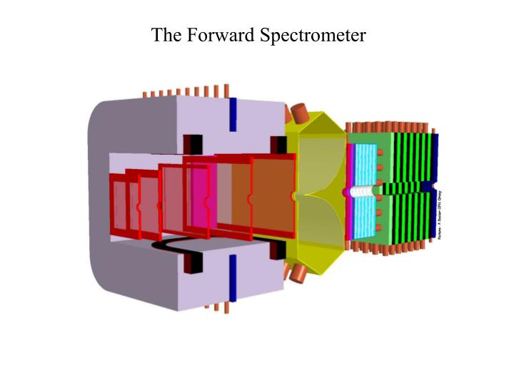 The Forward Spectrometer