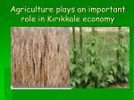 agriculture plays an important role in k r kkale economy