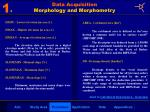 data acquisition morphology and morphometry