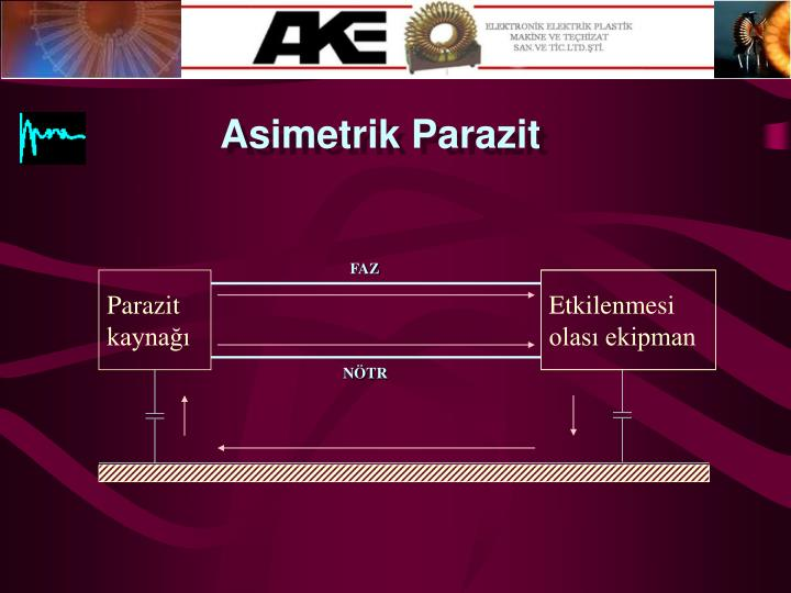 Asimetrik Parazit
