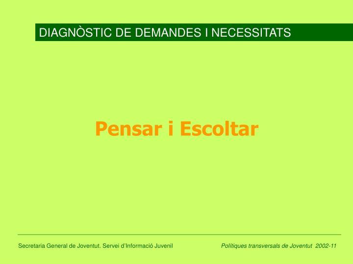 DIAGNÒSTIC DE DEMANDES I NECESSITATS