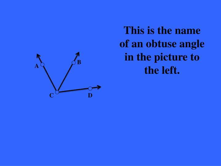 This is the name of an obtuse angle in the picture to the left.
