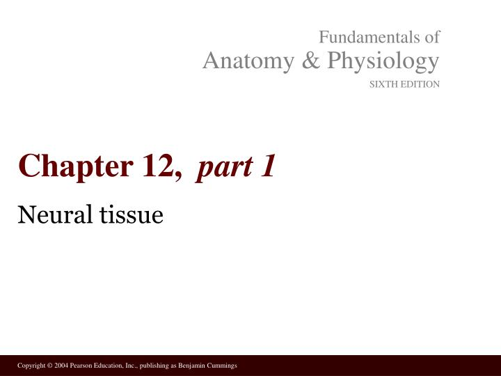 PPT - Chapter 12, part 1 PowerPoint Presentation - ID:4985360