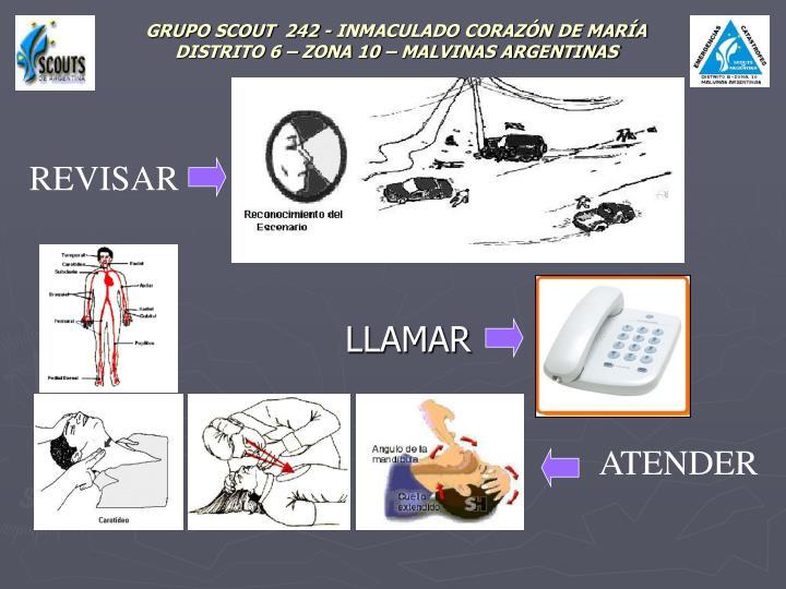 Grupo scout 242 inmaculado coraz n de mar a distrito 6 zona 10 malvinas argentinas