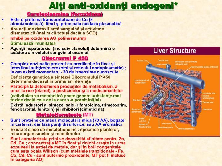 Alţi anti-oxidanţi endogeni