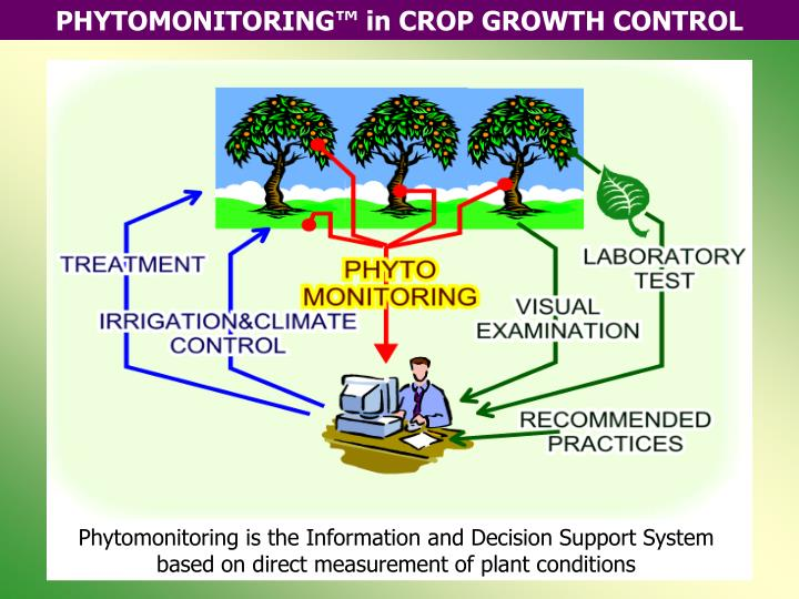 Phytomonitoring is the Information and Decision Support System based on direct measurement of plant ...