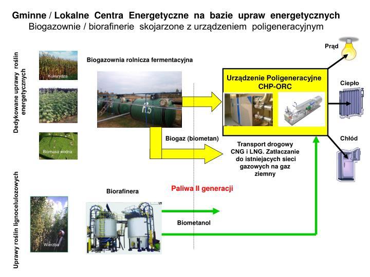 Gminne / Lokalne  Centra  Energetyczne  na  bazie  upraw  energetycznych