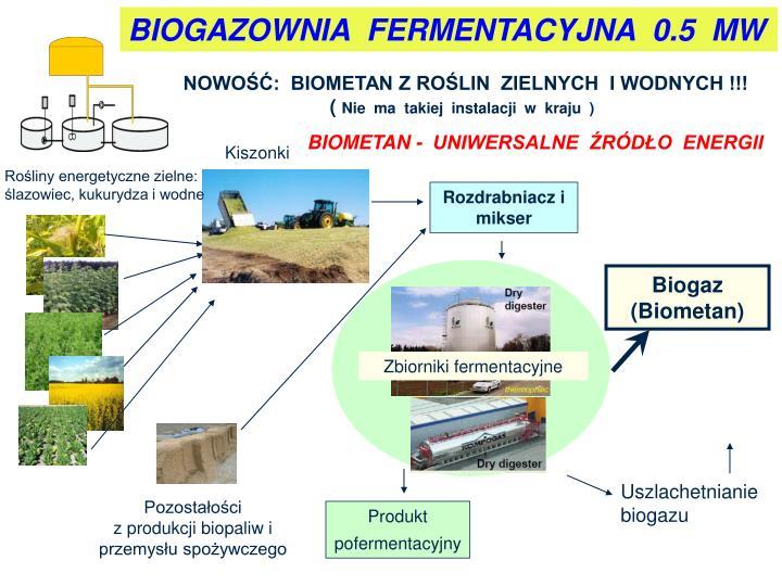 BIOGAZOWNIA  FERMENTACYJNA  0.5  MW